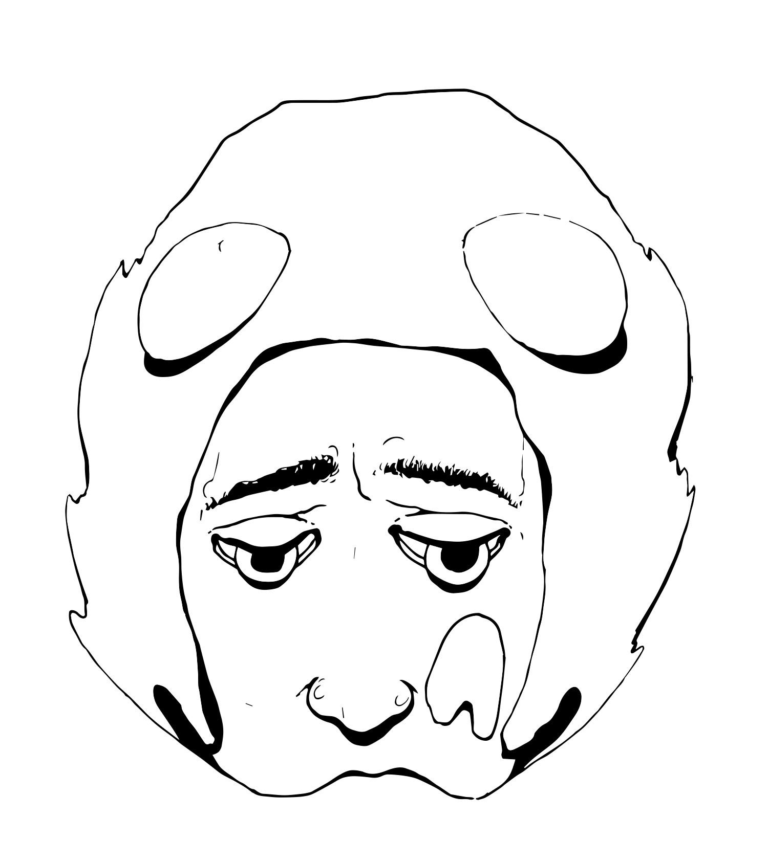 visage-compressor